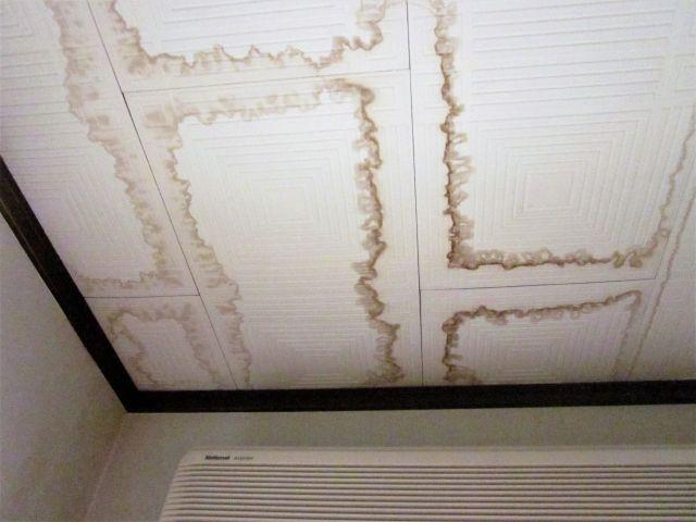 雨漏りの天井