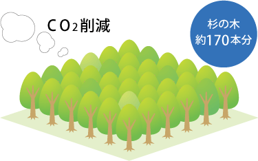 杉の木約170本分のCO2を削減